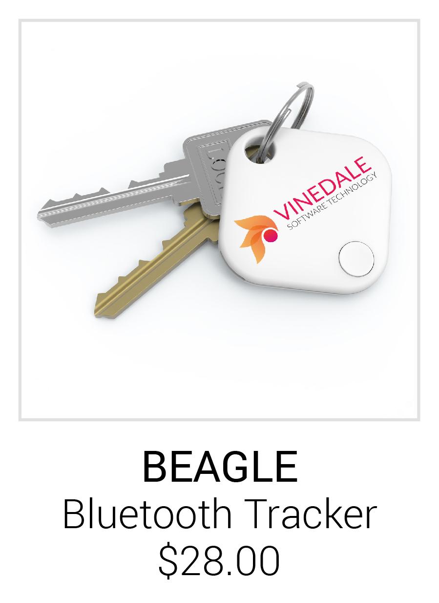 Beagle Program Image