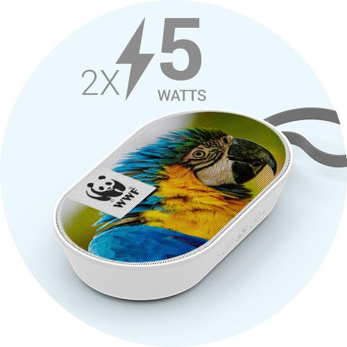 dual 5 watts