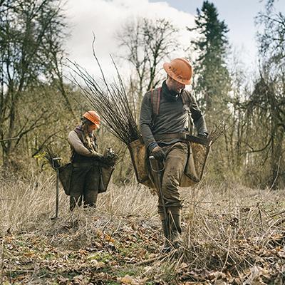 One Tree Planted - Willamette Valley Restoration
