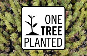 PowerStick Partners with One Tree Planted